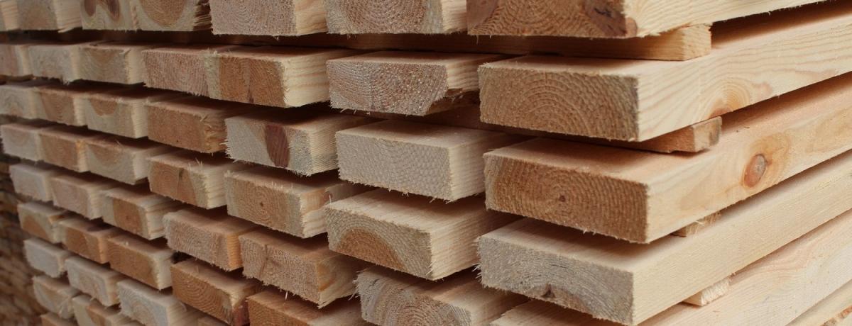 RiSE Holz